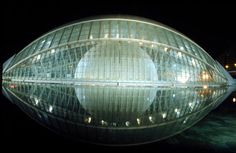 El proyecto de la Ciudad de las Artes y de las Ciencias de Valencia, está inspirado en un ojo humano, cuya figura puede reconocerse con el reflejo de la estructura en el agua que lo rodea.