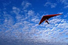 You're Hang Gliding. Describe your thoughts and feelings during this experience.