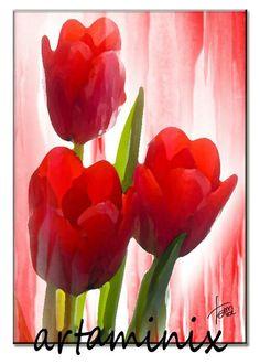 Tulipani #red #rosso #nature #flowers #romantic #handmade handmade#love