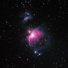 The Orion Nebula × http://pillxprincess.tumblr.com/ × http://amykinz97.tumblr.com/  × https://instagram.com/amykinz97/  × http://super-duper-cutie.tumblr.com/