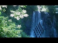 Relax music, nature, forest, waterfall, mountains, relaxing music and me...