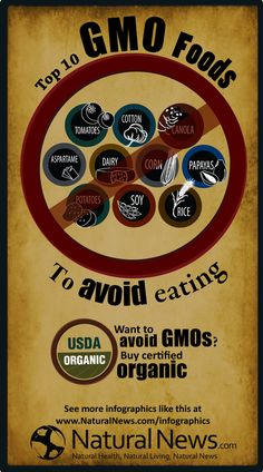 Top 10 GMO Foods to Avoid Eating #GMO