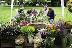 Kwiatowe Atelier Katarzyna Pawluk  #wzory_targi
