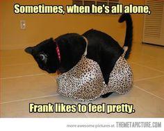 We won't judge you Frank…
