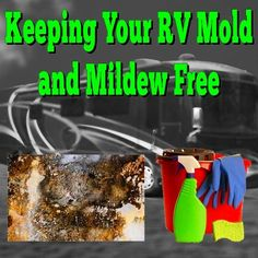 Keeping Your RV Mold and Mildew Free