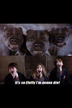 Despicable Potter