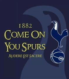 Tottenham Hotspur Football, London Pride, Spurs Fans, White Hart Lane, Football Art, North London, World Of Sports, Soccer Players, London England