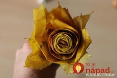 creative-ideas-diy-beautiful-maple-leaf-rose-7