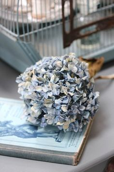 Good evening gals, tonight lets do a Hydrangea cottage using blue and periwinkle....