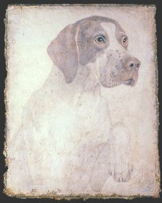 """This post was originally posted at LJ """"Seeking Beauty"""" ©Victor Koulbak *** ***. Renaissance, Silverpoint, Amazing Drawings, Art Graphique, Dog Art, Pet Portraits, Drawing Sketches, Painting & Drawing, Dogs"""