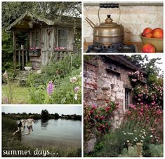 cozy house, good cup of tea, jump in the lake and some lovely flowers - a pretty good day
