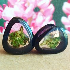 """Close up of the new Oblong Healing Flower plugs 💚 Shown in 7/8"""" (22mm) 🔥 This pair is ready to ship!"""