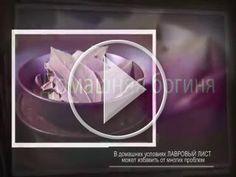 Talk Fusion Video Newsletter: Лавровый лист пригодится для необычных целей...Польза лаврового листа  Каждый дом обладает своим ароматом.  У кого-то он пахнет духами или кофе, у других же домашней едой или теплым молоком. Смотрите видео  и я надеюсь вам понравиться.                                                                                                                         Ах да и ещё смотрите мой  сайт ВОЗМОЖНОСТЕЙ,ЗАРАБОТАТЬ  НЕ ВЫХОДЯ ИЗ ДОМА ИЛИ ПРОДВИНУТЬ СВОЙ БИЗНЕС,ЛИЧНОЕ…