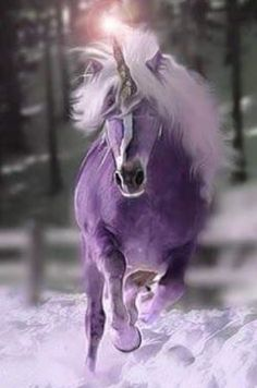 Purple unicorn and snow.in my dreams. Fantasy Unicorn, Unicorn And Fairies, Real Unicorn, The Last Unicorn, Unicorns And Mermaids, Purple Unicorn, Unicorn Art, Magical Unicorn, Magic Creatures