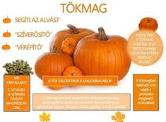 Alternative Therapies, Thing 1, Medicinal Plants, Natural Treatments, Herb Garden, Food And Drink, Healthy Eating, Pumpkin, Herbs