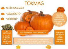 Életmód cikkek : Zöldség és gyümölcsök hatásai Alternative Therapies, Thing 1, Medicinal Plants, Natural Treatments, Herb Garden, Food And Drink, Healthy Eating, Pumpkin, Herbs