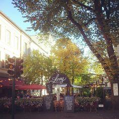 Autumn in the city! #oslo #autumn #majorstua