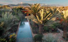 Chambres d'hôtes Taroudant Maroc - une palmeraie, une medina préservée, parfait pour un voyage de noces pas trop lointain mais totalement dépaysant !