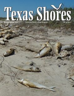 """It might be difficult to think of something as wet as a bay or estuary as being """"in drought,"""" but the devastation across Texas in 2011 also struck these coastal ecosystems. Unlike on land, many of the coastal effects of a drought occur beneath the surface of the water, hidden from view."""