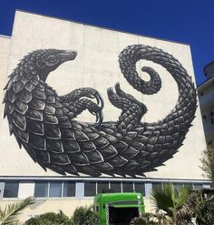 ROA  ..  [Cape Town, South Africa 2018]