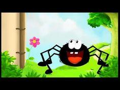Chanson : L'araignée Gypsie