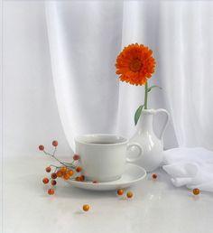 Morning by Elena Pankova on Coffee Cups, Tea Cups, Coffee Images, Good Morning Coffee, Still Life, Berries, Mugs, Tableware, Gerbera