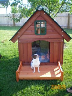 Porkchop on his new dog house.
