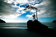 Barbados Wedding Photographers at Best of Wedding Photography. Check out the best wedding photographers in your area.