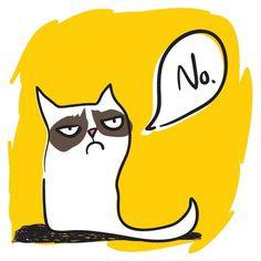 Grumpy Cat Icon Set