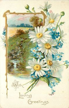 WITH LOVING GREETINGS  gilt bordered rural insert, daisies & forget-me-nots right Vintage Birthday, Flower Images, Flower Art, Vintage Ephemera, Vintage Greeting Cards, Vintage Labels, Vintage Floral, Vintage Flowers, Vintage Prints