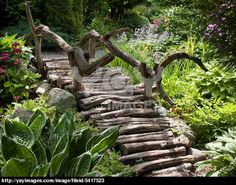 color on display gardening pinterest jardins. Black Bedroom Furniture Sets. Home Design Ideas