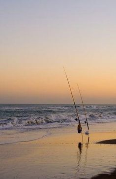 beach fishing tips Walleye Fishing, Sea Fishing, Saltwater Fishing, Kayak Fishing, Fishing Boats, Women Fishing, Carp Fishing, Fishing Tackle, Shimano Fishing