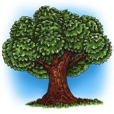 Big Tree Digi Stamp