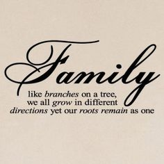 Family Like Branches On A Tree vinyl lettering wall sayings home art decor.$14.99