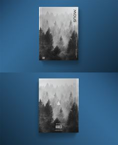 Design cover novel snow