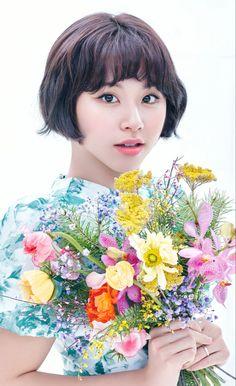 Nayeon, Kpop Girl Groups, Korean Girl Groups, Kpop Girls, Best Albums, Mini Albums, Twice Members Profile, Twice Chaeyoung, Twice Album