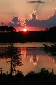Coucher de soleil sur le Bayou