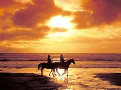 go horseback riding on the beach
