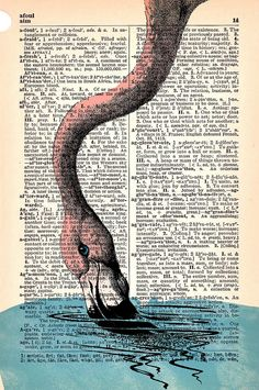 """pink flamingo runs """"afoul"""" while using a dictionary Flamingo Art, Pink Flamingos, Illustrations, Illustration Art, Flamingo Illustration, Dictionary Art, Pink Bird, Oeuvre D'art, Gifts For Family"""