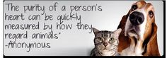 #PetQuotes to love! #AnimalThoughts