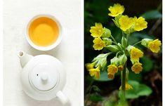 Natural Remedies, Vegetables, Tableware, Medicine, Dinnerware, Veggies, Dishes, Natural Treatments, Vegetable Recipes