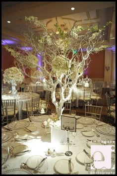 Manzanita tree branches, crystals, hanging glass candle holders and flower pomanders....maybe not white braches though...