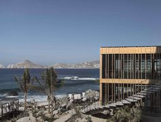 Los Cabos—commonly known as Cabo—is actually a catchall name for two distinct cities along the southernmost tip of the Baja Peninsula: beachy Cabo San Lucas and artsy San José del Cabo. Because of its pristine …