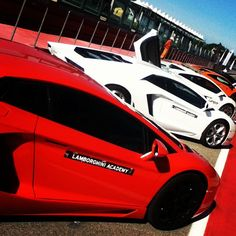 Arrived at Imola racecourse for Lamborghini Academy. These are our toys for the day! Eek! - Instagram by @michaelturtle