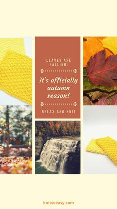 Fall Knitting Patterns, Easy Knitting, Cross Stitch Patterns, Knitted Hats Kids, Knitted Baby Blankets, Crochet Cross, Knit Crochet, Fall Home Decor, Fall Crafts
