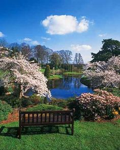 Cholmondeley Castle Gardens (Cheshire)