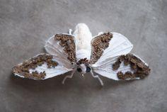 White moth soft sculpturArt insect home decor von mysouldesign