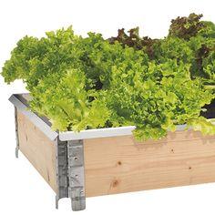 Dyrking i pallekarm – slik lykkes du - Plantasjen. Go Green, Outdoor Furniture, Outdoor Decor, Summertime, Herbs, Vegetables, Flowers, Plants, Gardening