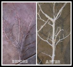 Frosted tree branch tutorial by Bridgey Widgey featured on iheartnaptime.net!