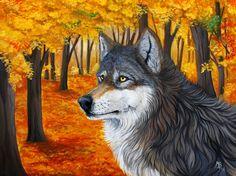 The Autumn Wolf by wolf-minori on @DeviantArt
